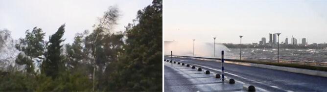 Huraganowy wiatr nad fiordami. Dagmar powalił Skandynawię