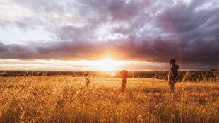 Prognoza pogody na pięć dni: słońce, deszcz, burze i...komfort termiczny