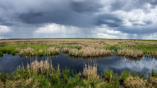 Prognoza pogody na dziś: <br />pochmurny dzień z przejaśnieniami