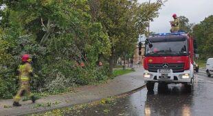Silny wiatr w województwie lubuskim